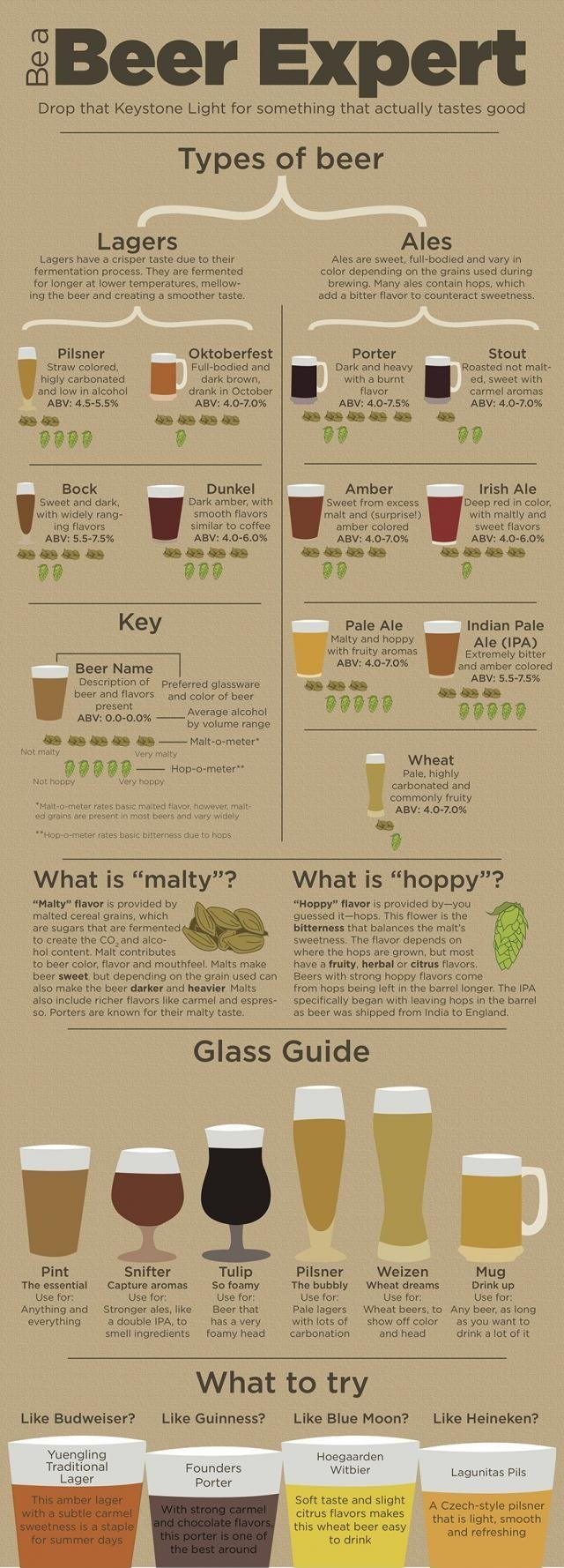 How+to+beer+for+beginners+beer+is+god+beer+is_767317_5702726